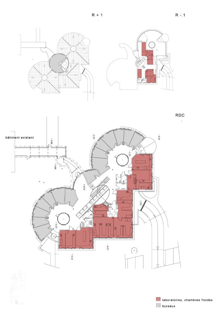 atelier-iwona-buczkowska-batiment-de-zoologie-forestiere-17